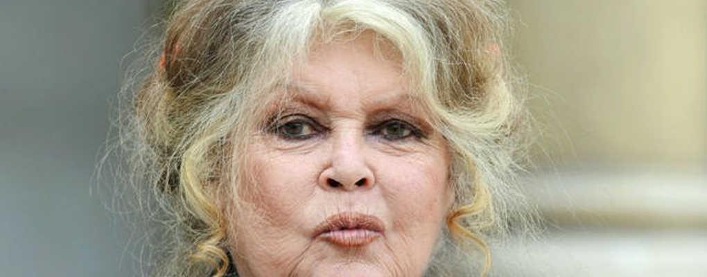 France : Clash entre le ministre Hulot et Brigitte Bardot