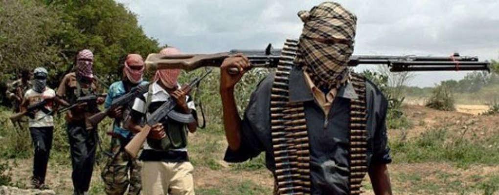 Niger : Boko Haram enlève une dizaine de filles
