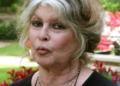 Brigitte Bardot : « Vous nous pompez l'air avec votre virus »