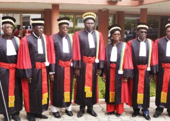 Les sages de la cour constitutionnelle
