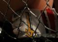 MMA : le champion béninois Chérif Dramé livre un combat à Yaoundé le 15 mai