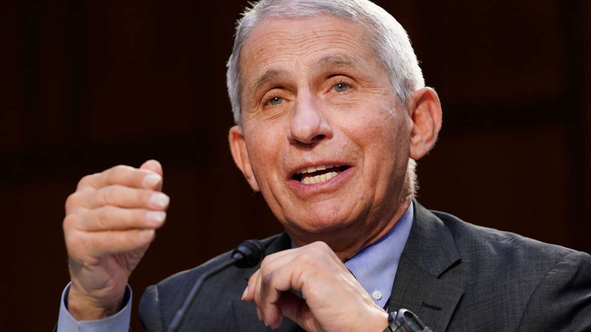 Dr Fauci (Photo Susan Walsh | Pool | Getty Images)