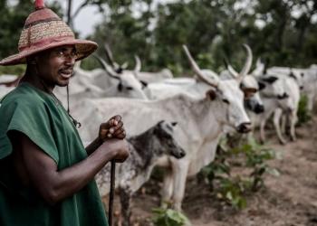 Éleveur peulh du Nigéria (photo : AFP PHOTO / LUIS TATO)