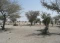 Burkina : un burkinabé et 3 européens disparus après une attaque