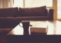 Immobilier : le groupe Duval s'étend en Afrique