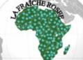 Bénin:  appel à générosité pour une opération à la tête de la petite Larrisa Rose HOUNVENOU