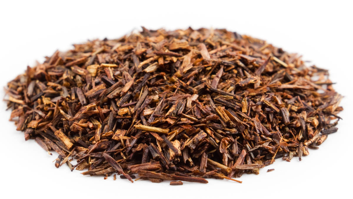 Rooibos (Photo DR)