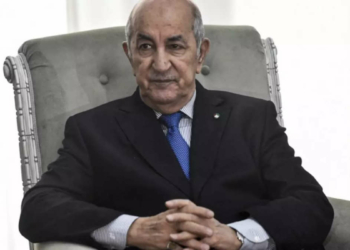 Le président Tebboune (Ryad Kramdi, AFP)