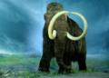 Des scientifiques veulent ramener les mammouths à la vie