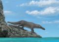 Phiomicetus anubis : le fossile d'une baleine à pattes identifié en Egypte