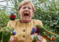 Cette photo de Merkel hurlant de peur dans un zoo amuse les internautes