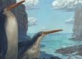 Le fossile d'un pingouin géant découvert par des néo-zélandais
