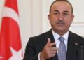 Propos de Macron sur la Turquie et l'Algérie : Ankara parle de « populisme »