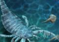 Le fossile d'un scorpion géant des mers découvert en Chine