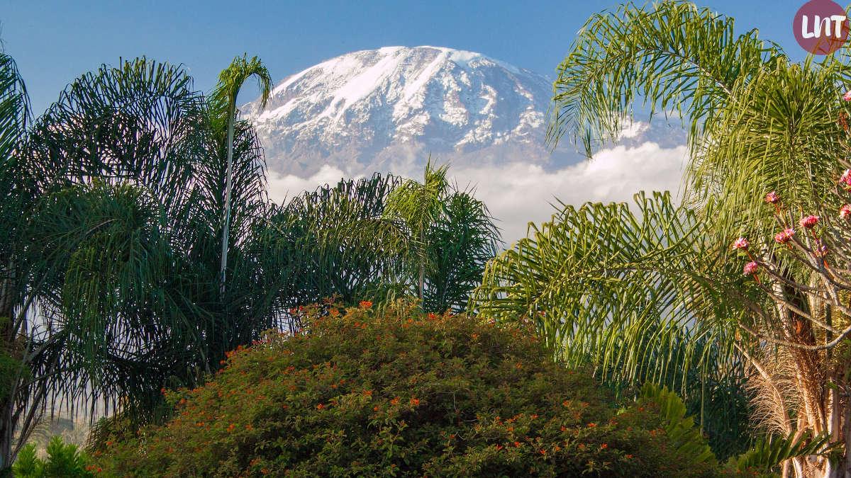Pho d'illustration : Kilimandjaro
